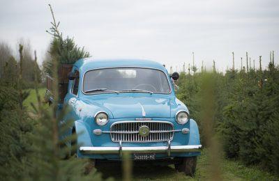 Zeldzame Fiat Millecento Autocarro 1957